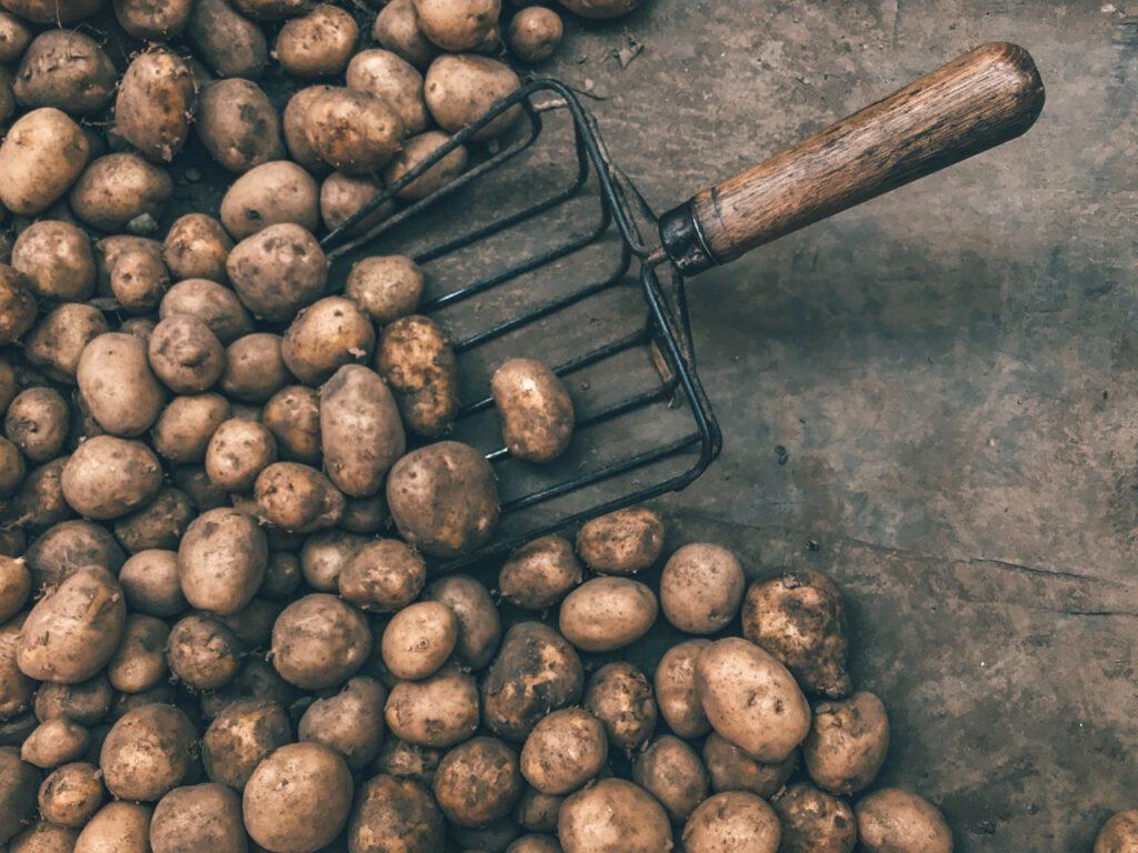 ziemniaki kcal